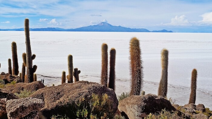 SALAR DE UYUNI-TRAVEL GUIDE