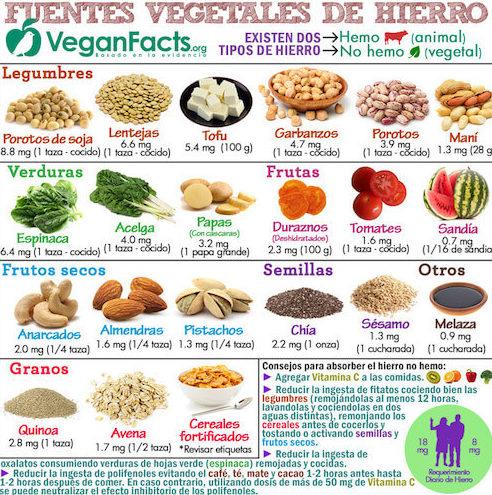 Fuentes de hierro para veganos- guia vegana para principiantes-the vegan hopper