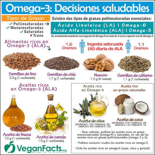 Fuentes Veganas de Omega 3- guia vegana para principiantes-the vegan hopper