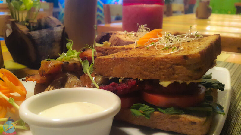 Sandwich vegano en Clorofila-Playa del Carmen