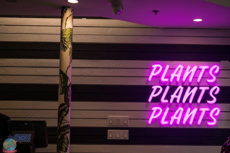 Letrero en color morado que indica Plants, Plants, Plants