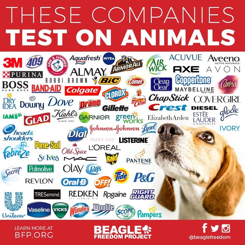 Brands that test on animals, cruelty-free beauty