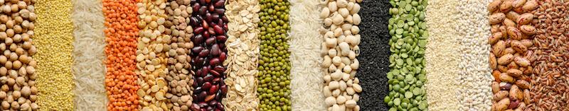 granos y leguminosas